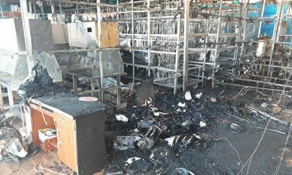 Cháy xưởng sâm Ngọc Linh ở Đà Lạt, thiệt hại hàng tỷ đồng