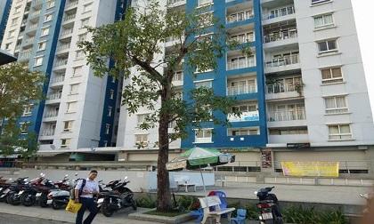 Lộ dấu hiệu sai phạm động trời trong vụ cháy chung cư Carina khiến 13 người thiệt mạng