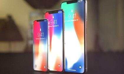 Lộ kích thước iPhone X Plus quá đẹp, tương đương iPhone 8 Plus