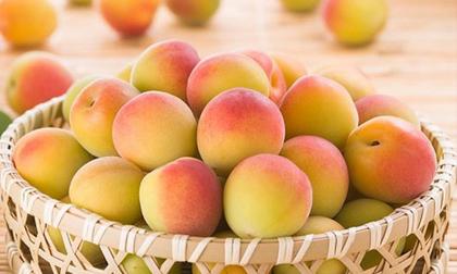 Mùa hè, ăn trái cây nào tốt nhất?