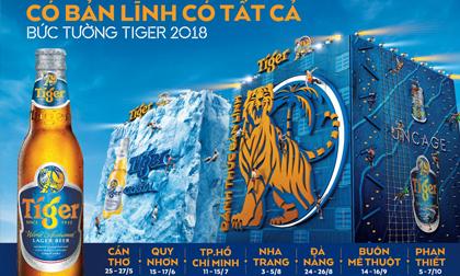Bức tường Tiger trở lại, quy mô khủng nhất từ trước đến nay