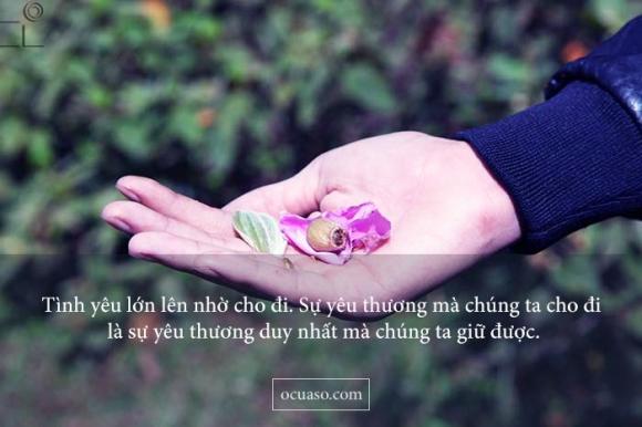 status-yeu-thuong-hay-nhat-2