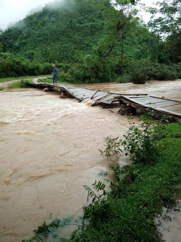 Sau bão Sơn Tinh, 35 người vào rừng hái măng bị mất liên lạc - 1