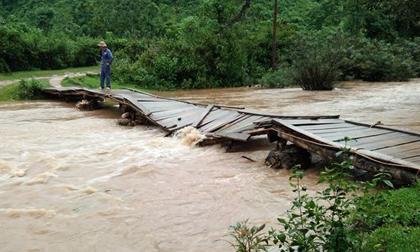 Sau bão Sơn Tinh, 35 người vào rừng hái măng bị mất liên lạc