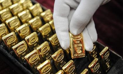 Giá vàng hôm nay 6/8: Nhiều nỗi lo nhấn chìm giá vàng
