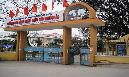 Từ mâu thuẫn qua Facebook, nam thanh niên bị chém tử vong trước cổng trường học