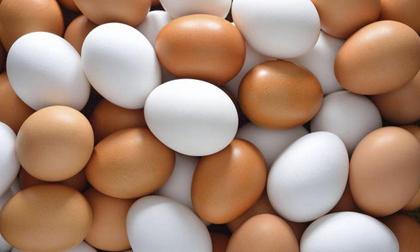 Mách chị em cách phân biệt trứng gà bị tẩy trắng bằng mắt thường tránh nguy cơ ngộ độc