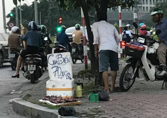 Cua biển 70.000 đồng/con bán ở Hà Nội có phải nhập từ Trung Quốc? - 1