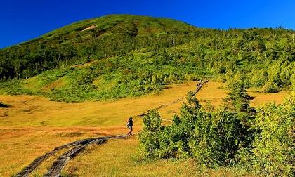 Đến cao nguyên Oze - công viên đầm lầy tuyệt đẹp của Nhật Bản