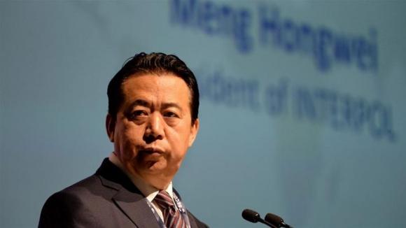 Chủ tịch Interpol bị bắt ở Trung Quốc là ai? - 3