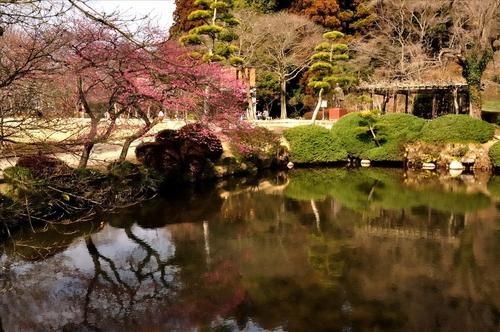 Lạc lối tại xứ ảo mộng trong những khu vườn đẹp như cổ tích này - 3