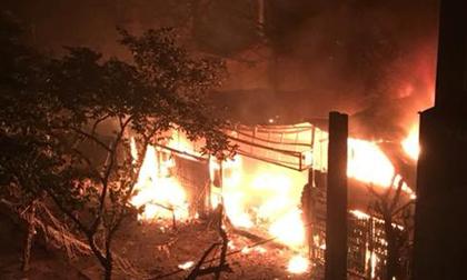 Hà Nội: Đang ngon giấc, người dân hốt hoảng phát hiện đám cháy dữ dội tại Chùa Láng