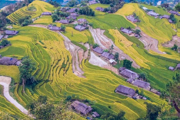 Ngỡ ngàng vẻ đẹp ruộng bậc thang Hoàng Su Phì mùa lúa chín - 3