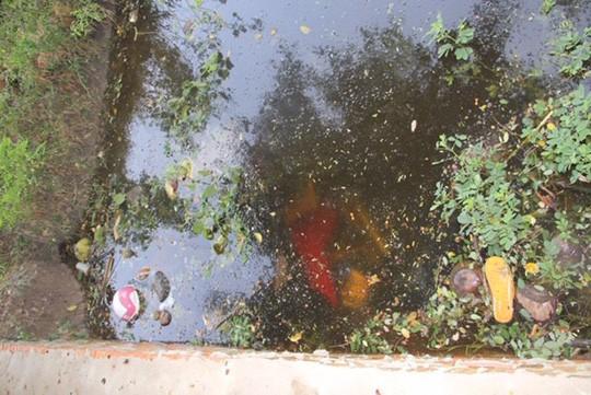 Tây Ninh: Phát hiện 2 thi thể dưới mương nước - Ảnh 1.
