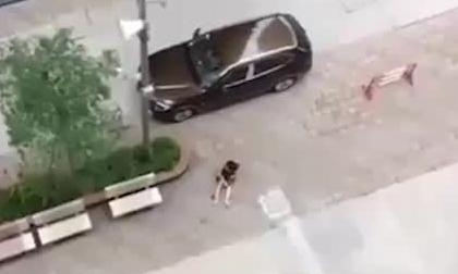 Clip: Nghi chồng cũ nổ súng bắn vợ ở chung cư, phóng ô tô bỏ chạy