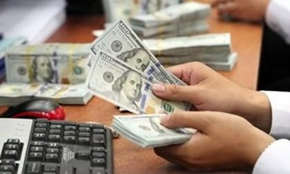 Vụ đổi 100 USD phạt 90 triệu: Quyết định khám xét tiệm vàng là bất hợp pháp?
