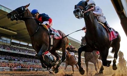 Sau đua F1, Hà Nội sẽ có trường đua ngựa 500 triệu USD