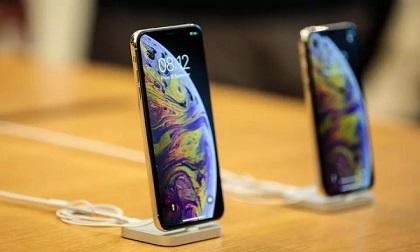 iPhone nào là phù hợp cho bạn mua sắm du xuân?