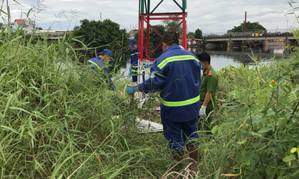 Hốt hoảng phát hiện thi thể nam giới trôi trên sông Vàm Thuật ở Sài Gòn