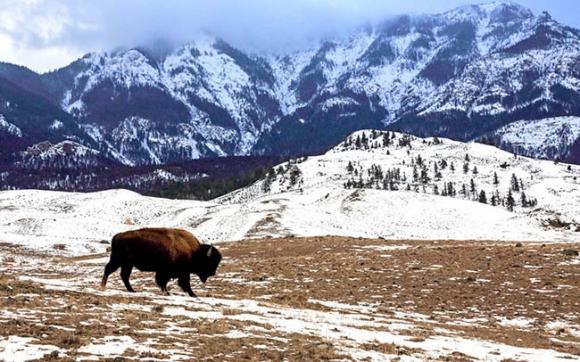 Chẳng sợ gì lạnh giá khi được tận hưởng mùa đông tại những vùng đất thiên đường này - 8