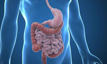 """5 thực phẩm vàng giúp """"tẩy sạch"""" ruột, loại bỏ dầu mỡ, giải độc cơ thể hiệu quả bất ngờ"""
