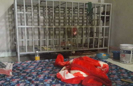 Khung cảnh căn phòng mà mà ông N. nhiều năm bị nhốt trong cũi sắt