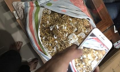 Vụ trộm 430 lượng vàng Quảng Nam: Nữ chủ tiệm vàng khai báo gì?