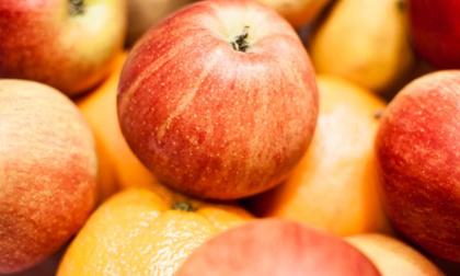 Những loại thực phẩm ngày Tết cấm kỵ để cạnh nhau