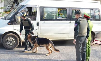 Thuê xe tang lễ để vận chuyển 14.000 viên ma túy