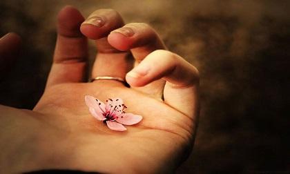 Phật dạy: Muốn gặp may mắn đừng tìm thầy phong thủy, chỉ cần làm điều này là đủ