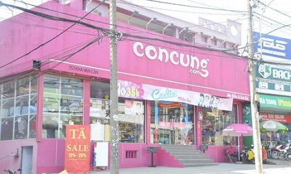 Bắt nghi phạm đột nhập cửa hàng Con Cưng phá trộm két sắt