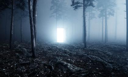 Bên trong khu rừng ma ám đáng sợ nhất thế giới