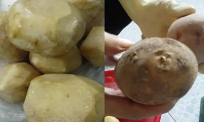 Hiệu trưởng bị phản ánh cho học sinh ăn sắn mốc, khoai tây mọc mầm
