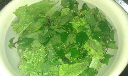 4 thói quen rửa rau sai lầm ảnh hưởng đến sức khỏe mà người Việt mắc phải