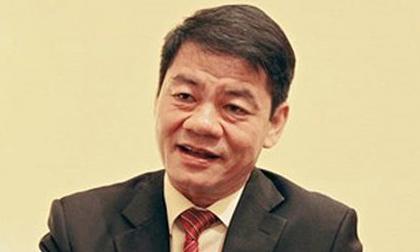 Thaco lãi hơn 6.200 tỷ, tỷ phú Trần Bá Dương 'đút túi' hơn 1.300 tỷ