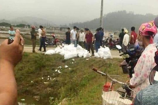 Truy nã quốc tế ông trùm Đài Loan trong vụ bắt giữ 700 kg ma túy đá - Ảnh 3.