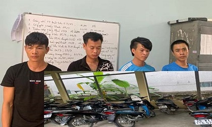 Bắt ổ nhóm gây ra hàng chục vụ trộm cắp xe máy