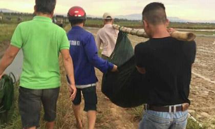 Quảng Trị: Đi làm ruộng thuê kiếm tiền nuôi con, người phụ nữ bị sét đánh tử vong