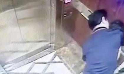 Vụ 'nựng' bé gái trong thang máy: Lộ lý do Nguyễn Hữu Linh dùng tên giả khi khai báo
