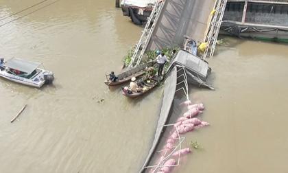 Vụ sập cầu ở Đồng Tháp: 'Xe tải nặng gần 30 tấn không sập mới lạ'