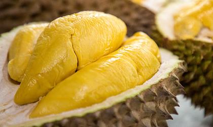 Dù nghiện đến mấy, những người mắc các bệnh sau không nên ăn sầu riêng