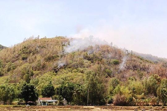 Bom, đạn nổ vang trời trong đám cháy rừng ở Bình Định - 1