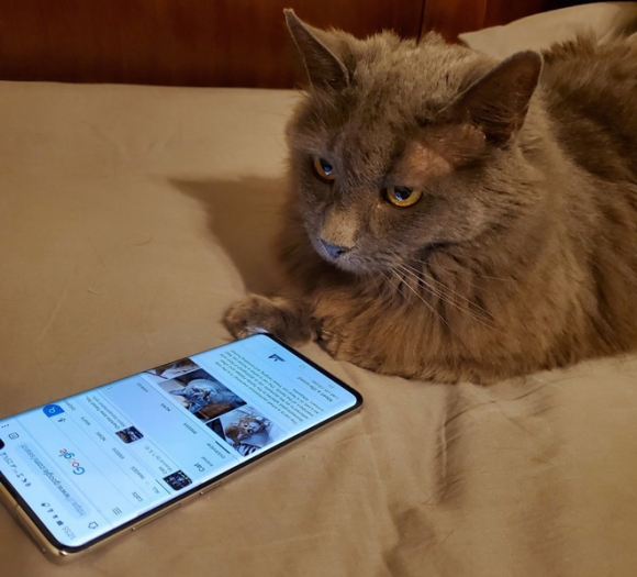 Sốc: Người dùng smartphone đang bị nghe lén - 3