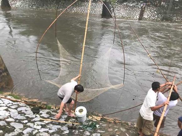 Người dân Hà Nội buông cần, giăng lưới bắt cá sau bão số 3 - 2