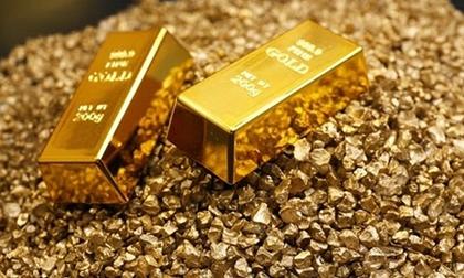 Giá vàng hôm nay 12/8,tuần này, tiếp tục tăng giá
