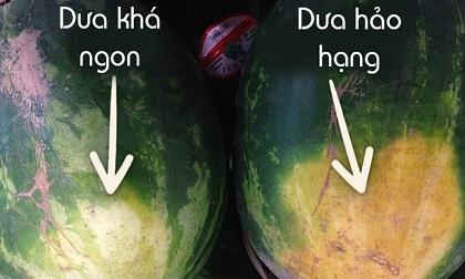 Người bán dưa hé lộ: Chỉ cần 5 giây để chọn được quả dưa hấu ngon ngọt, không có hóa chất