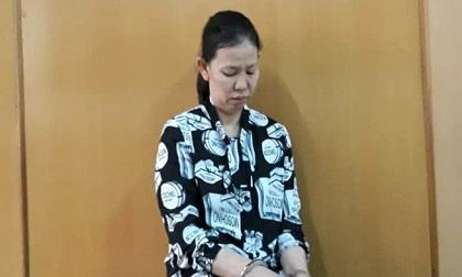 Nữ giúp việc trộm hàng trăm triệu của gia chủ lĩnh 17 năm tù