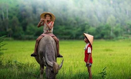 Nếu cuộc sống không hạnh phúc, hãy thay đổi bản thân chứ đừng phí thời gian than thở