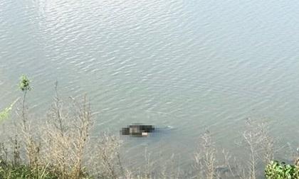 Đi câu cá, hoảng hồn phát hiện thi thể nam giới trôi sông