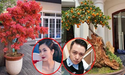 Sao Việt trang hoàng nhà cửa ngập sắc hoa, rộn ràng chuẩn bị đón Tết Nguyên đán Canh Tý 2020